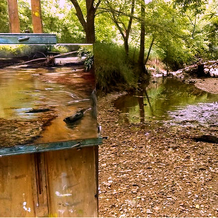Class Image Painting Outdoors at Reynolda Gardens: Plein Air