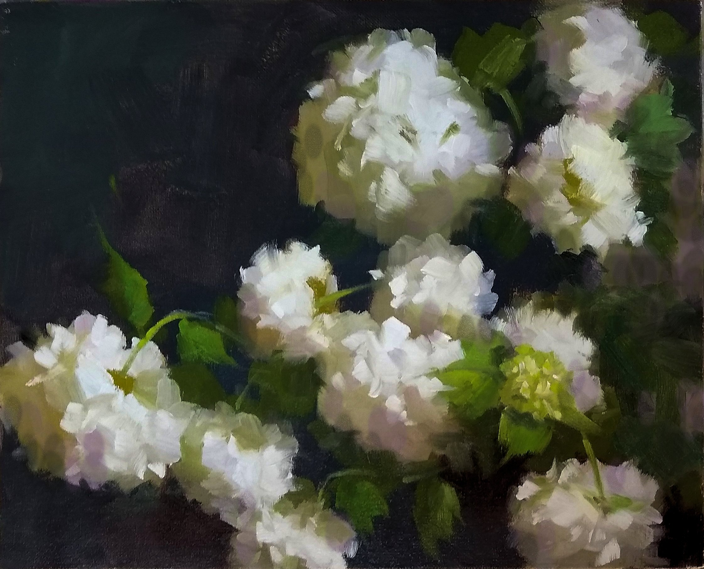 Class Image Painting Spring Blossoms