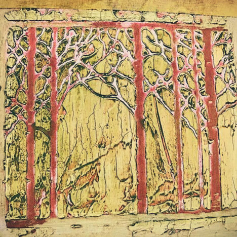 Class Image Introduction to Collagraph