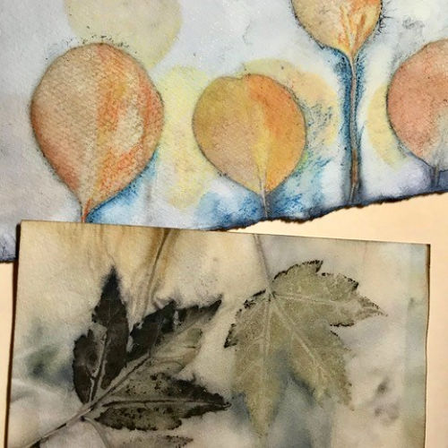 Class Image Eco-Printing on Paper