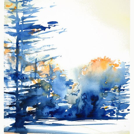 Class Image Mindful Observation in Watercolor